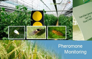 Phermone monitoring services